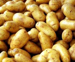 В Skyrim играют при помощи картошки