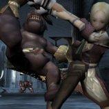 Скриншот Valhalla Knights 2