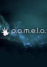 Обложка P.A.M.E.L.A.
