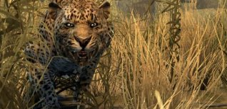 Cabela's Dangerous Hunts 2011. Видео #1