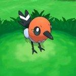 Скриншот Pokémon Y – Изображение 30