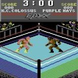 Скриншот Championship Wrestling – Изображение 2