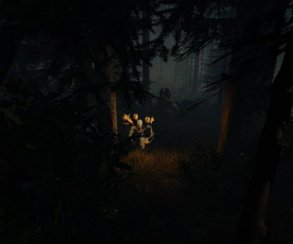 Новые кадры хоррора The Forest для Oculus Rift погрузились в темноту