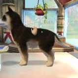 Скриншот Paws & Claws Pampered Pets Resort 3D