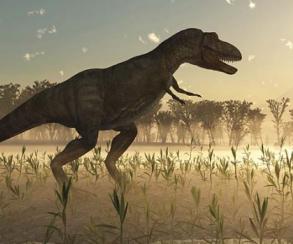 Тираннозавры не были пернатыми – в отличие от многих динозавров