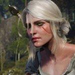 Скриншот The Witcher 3: Wild Hunt – Изображение 23
