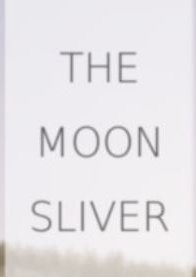 The Moon Sliver