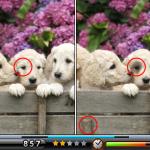 Скриншот Spot the Differences! – Изображение 1