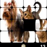 Скриншот PhotoPuzzle – Изображение 5