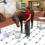 Скриншот Paws & Claws Pet Vet: Australian Adventures – Изображение 4