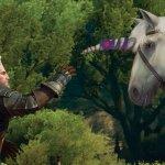 Скриншот The Witcher 3: Wild Hunt - Blood and Wine – Изображение 12