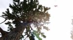 Этот мод для Skyrim сделает растительность по-настоящему реалистичной. - Изображение 2