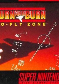 Turn and Burn - No-Fly Zone – фото обложки игры