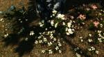 Этот мод для Skyrim сделает растительность по-настоящему реалистичной. - Изображение 5