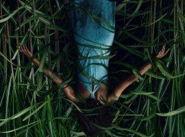 Netflix выпустил трейлер хоррора «Ввысокой траве», основанного наповести Стивена Кинга иДжо Хилла