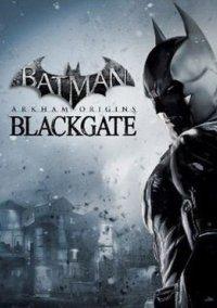 Batman: Arkham Origins Blackgate – фото обложки игры