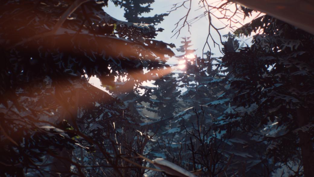 Рецензия на The Awesome Adventures of Captain Spirit, приквел Life is Strange 2, игры студии Dontnod | Канобу - Изображение 5