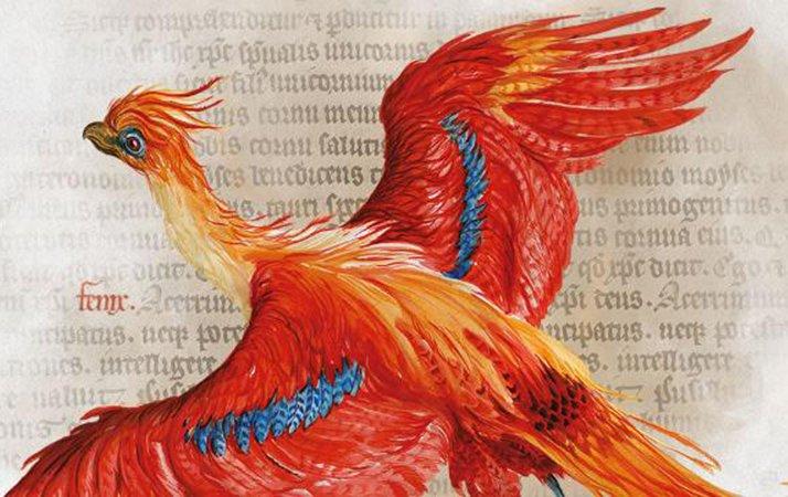 Вернитесь вчудесный мир магии вместе сHarry Potter: AHistory ofMagic извездой «Игры престолов» | Канобу - Изображение 1472