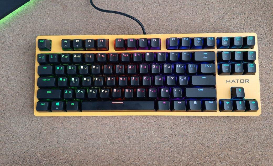Обзор клавиатуры Hator Rockfall EVO TKL. Бюджетная оптическая клавиатура | Канобу - Изображение 1448